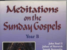 Meditations on the Sunday Gospels 2