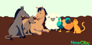 The tale of the Easter Donkey and his Friends