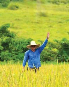 Fazenda da Esperança