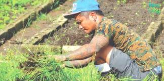 Fazenda da Esperança: A Masterpiece of Hope